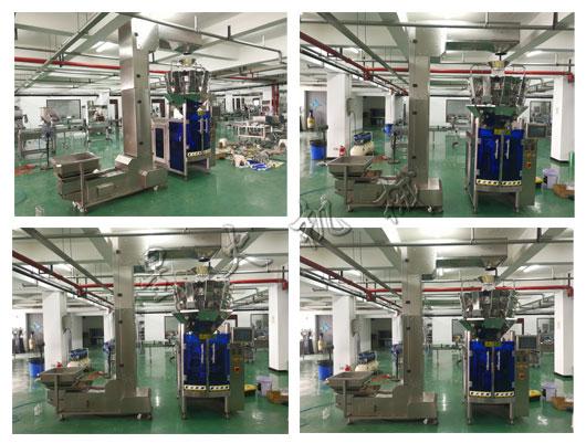 星火核桃包装机械生产线厂家厂房实拍